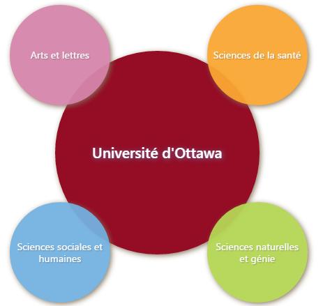 CV académique