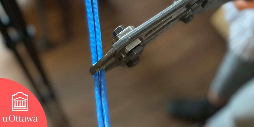 Wire and bolt cutter
